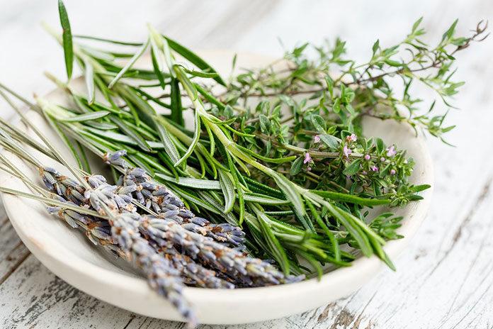 Adaptogeny – co warto wiedzieć o tych unikalnych ziołach?