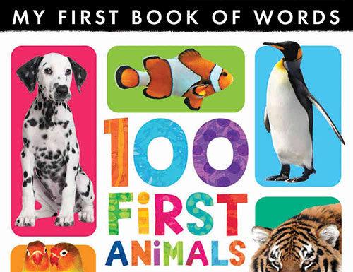Słowniki obrazkowe dla dzieci